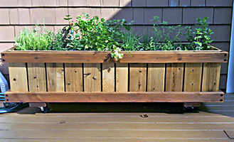 2 x 4 rolling planter with rhubarb and strawberries